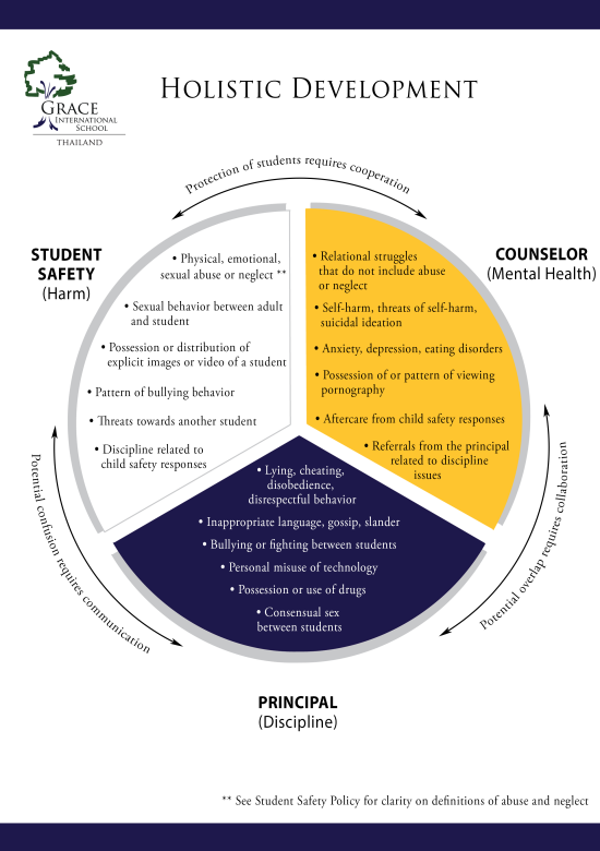 Student Safety Pie Chart
